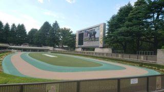 東京競馬場パドック